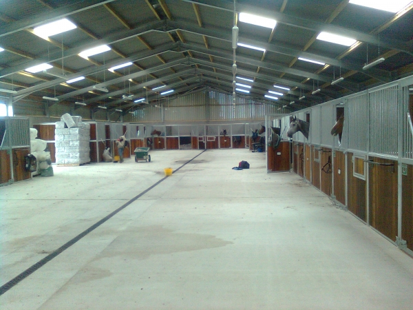 Inside the new horse stables at Headley Stud - Built by Greenham Construction - Industrial Construction in Berkshire